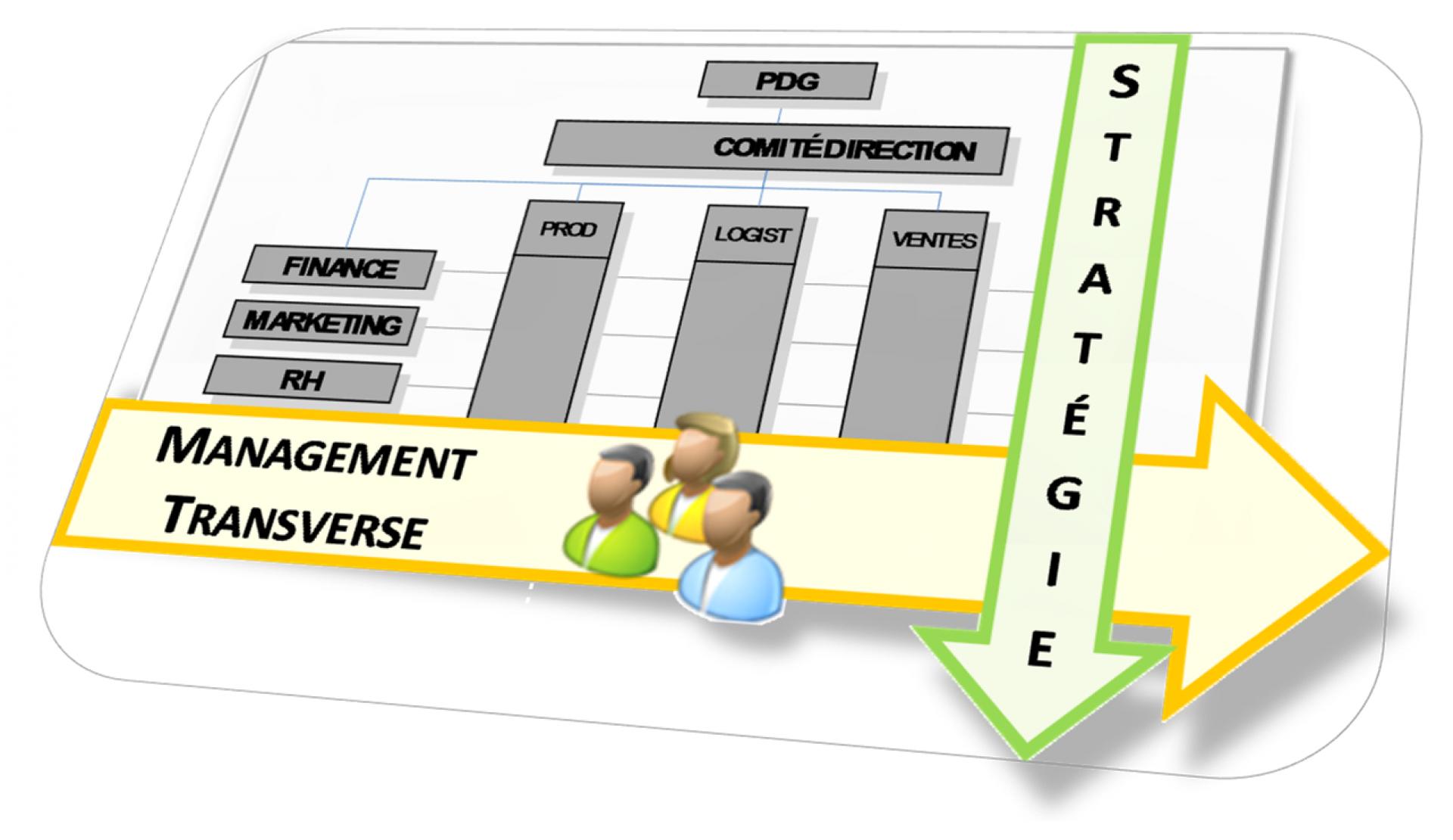 Conseil en Strategie et Projets